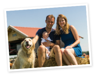 familie-Holtrop Tjonger Jersey Friesland